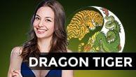 Dragon Tiger IDN