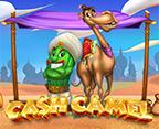 Cash Camel