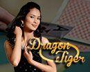Dragon Tiger Playtech